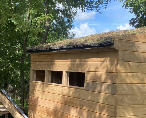 Schuur cottage